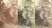 arbres et rocher (study)(3 works, various sizes) by charles edouard (baron de crespy) le prince