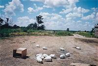 black bayou plantation near glendora, mississippi by william eggleston