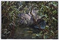 donde nacen las aguas by carlos rios