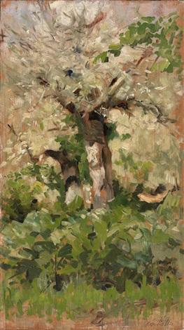 olivenbäume by giovanni fattori