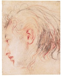 head of a young man, in profile, turned to the left by jean antoine watteau