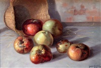 bruised apples by gerard glynn