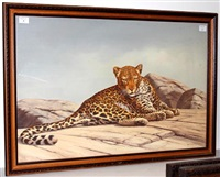 a leopard by robert macintosh