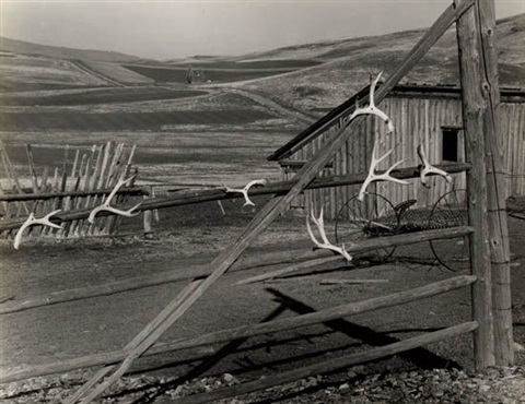 untitled oregon by minor white