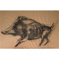 wild boar by nicola hicks