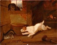 chien poursuivant les chats by martin theodore ward