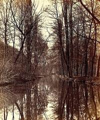reflets dans un plan d'eau by victor muzet