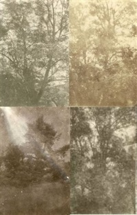 arbres (study)(4 works, various sizes) by charles edouard (baron de crespy) le prince