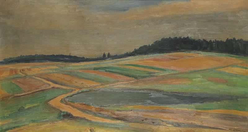 a field road by vaclav rabas