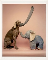 pink elephants by william wegman