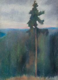 landscape by einar ilmoni