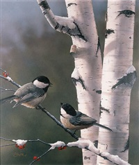 chickadees by a silver birch tree, winter by daniel smith
