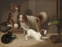 spaniels, a cat and a parrot in an interior by george smith of chichester