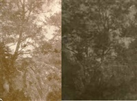 arbres et rocher (study)(2 works, various sizes) by charles edouard (baron de crespy) le prince
