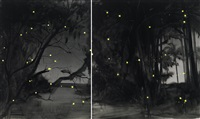 transient history of life (diptych) by huang yuxing