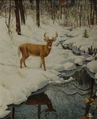 buck by stream in winter by robert doares