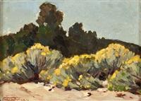 chamisa - el rancho de san sebastian by frémont ellis