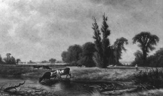 long creek washademoak by john christopher miles