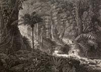 forêt vierge du brésil (after jean-baptiste comte de clarac) by claude f. fortier