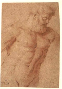 study of the farnese hercules by artus quellin the elder
