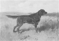 irish setter on point by hermann gustave simon