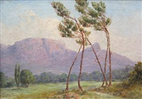 paysage aux pins by edward clark churchill mace