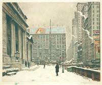 new york public library by t. frantisek simon