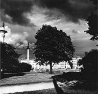 place dans la tempête, saint-pétersbourg by boris smelov