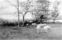 sheep grazing by john wesley little