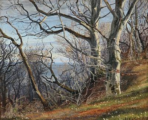 spring day at a hillside with beeches and anemones, in the background the sea by janus andreas barthotin la cour