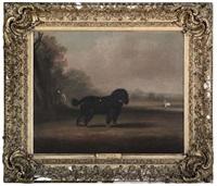 pincher by william henry davis