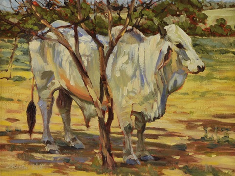 brahman by barbara hill