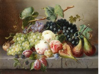still life with fruit and insects on a marble ledge by amalie kaercher