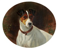 trimmer, a smooth fox terrier by george earl