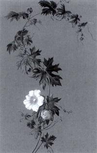 schlingpflanze mit gelben blüten by adolf (carl) senff