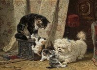 a terrier playing with kittens by henriette ronner-knip