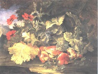 a still life of mushrooms and poppies at the foot of a bush by niccolino van houbraken