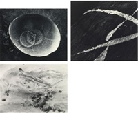 selected images (from sound of one hand clapping) (3 works) by minor white