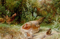 a mother hen with her brood by george hickin