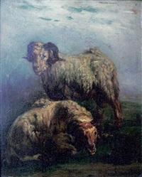 les moutons by françois simon