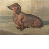 gretta - a dachshund by nina colemore