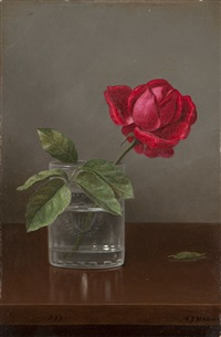 only by martin johnson heade