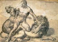 figura virile nuda che lotta con una tigre e un leone (study) by francesco coghetti