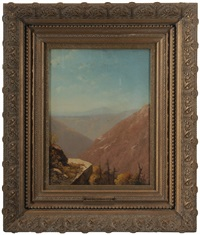 allegheny mountains from a rocky outcropping by john williamson