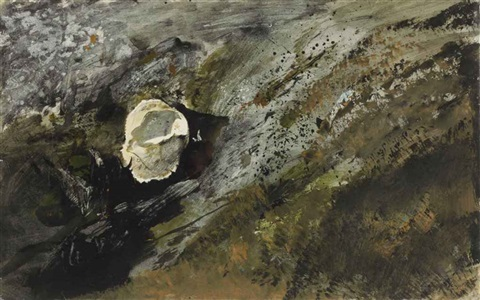 inland shell by andrew wyeth