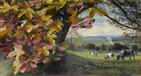 cows in an autumn landscape by raymond booth