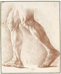 STUDY OF LEGS FOR