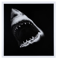 big shark by robert longo