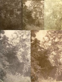 arbres et rochers (study)(5 works, various sizes) by charles edouard (baron de crespy) le prince