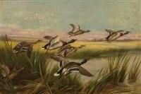 the alarm or mallards by edgar hunt